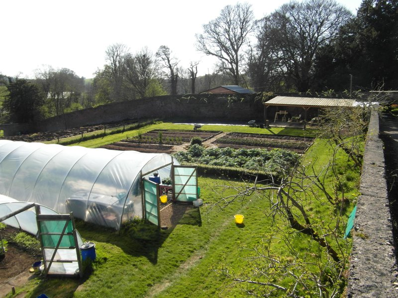 Overview of the garden and the new potato field
